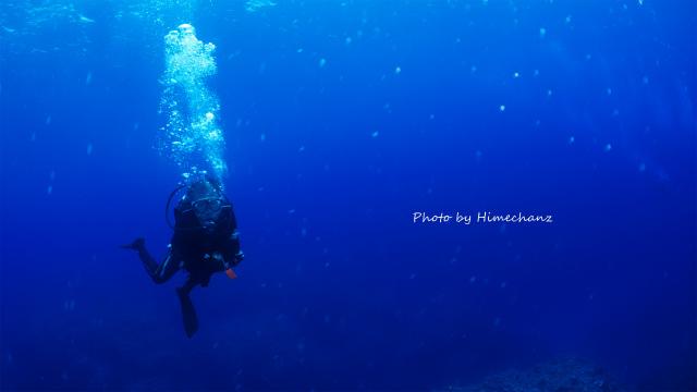 今日はほんっと青い海だったなぁ♪