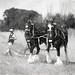 Ploughing B&W by zodski