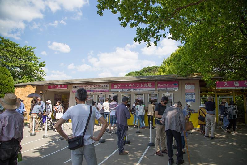 ashikaga_flowerpark-2