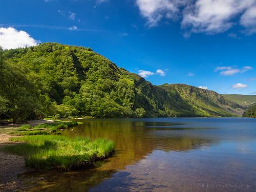 ireland lake mountains reflection clouds forest landscape nationalpark europe bluesky eire hills glendalough wicklow omd em5 microfourthirds 1250mmf3563mzuiko