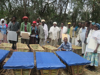 Ethio-ribrab beehive constructed by Farmers (Photo:ILRI\LIVES)