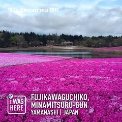 #instaplace #instaplaceapp #place #earth #world  #travelprothai #japan #JP #fujikawaguchiko,minamitsurugun  #day