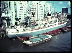 New Fresh Wharf c1960