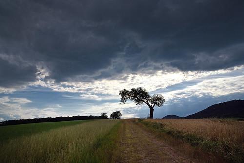 Quand un gros nuage noir envahi le ciel