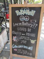 Pokemon in the world and out