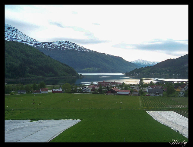 Fiordos noruegos Storfjord Geiranger Hellesylt Briksdal Loen - Fiordo Nordfjord en Loen