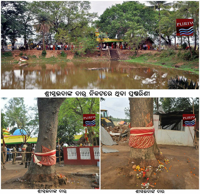 Photo :: Adhangagada is popular for Maa Subhadra Neem tree