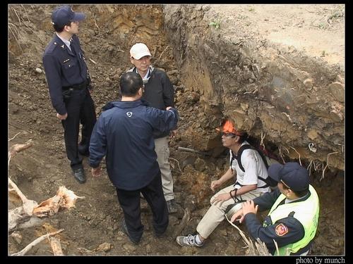 游藝等人鑽下樹穴也無法阻止移樹工程。攝影:Munch
