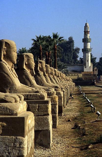 Ägypten 1999 (244) Tempel von Luxor: Sphingen-Aallee und El-Mekashkesh Moschee.
