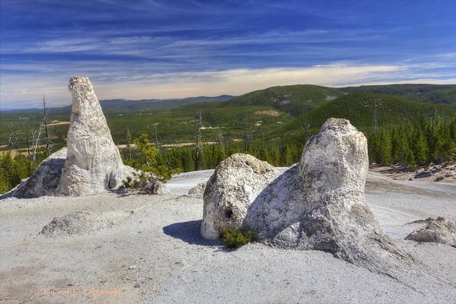 Stone menagerie