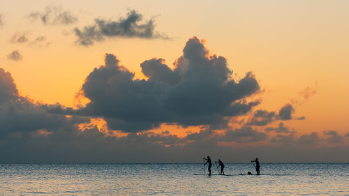 beach boards paddle grand seven cayman mile