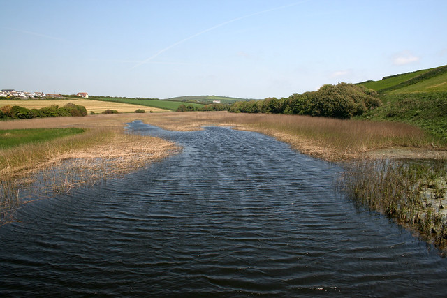 Stream at Thurlestone Sand