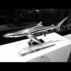 AK-47 Shark - #sfo #SanFrancisco #bayarea #california #sculpture #art #galleries