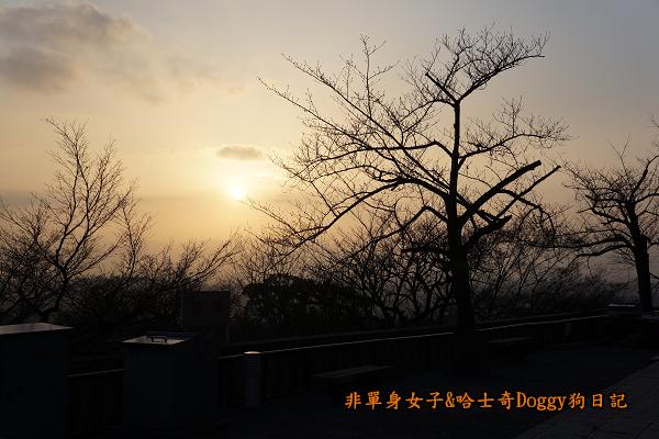 日本京都清水寺13