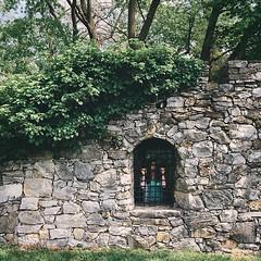Confined. #latergram #museum #arboretum #trapped #prison #cell #garden #ivy #stonewall #forest #portrait #postthepeople #friendsinmyfeed #makeportraitsnotwar #peoplescreatives
