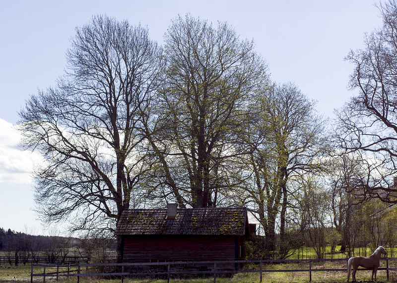 Ye Old Farm Building