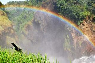 Rainbow above the Falls