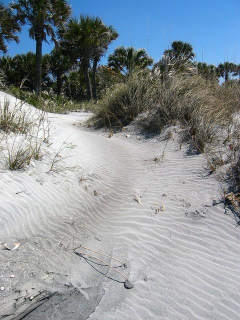 Path to dunes