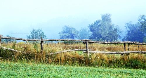 Foggy morning in Przemyśl :)