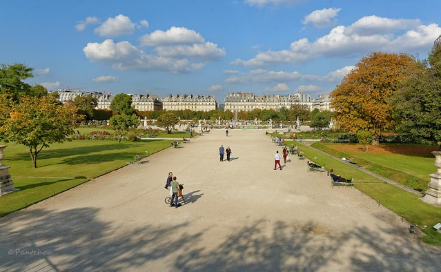 Paris / Tuileries gardens
