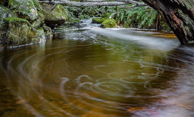 Snug River #58
