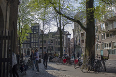 NEDERLAND - Amsterdam 032