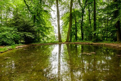 2015-05-24 Weimar Goethewanderweg 0172.jpg