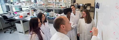 Dr. David Ladle lab