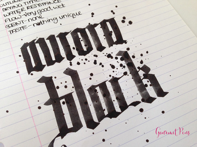 Ink Shot Review Aurora Black @BertramsInkwell  (6)