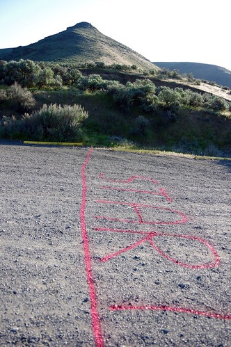 ジェームスがスプレーで線を引いたところがスタートライン。オーカス島50キロではスプレー缶を忘れて、かかとでスタートラインを引いてました。
