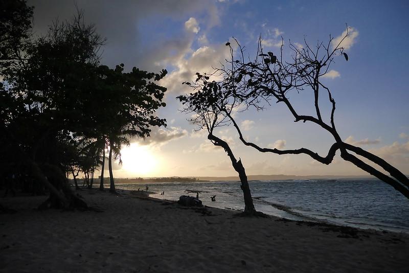 Sur les côtes de Guadeloupe 16828325557_6833bd588f_c