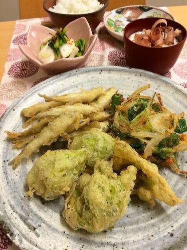 ふき天ぷら