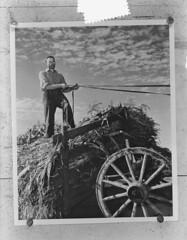 Nederlandse emigrant in Ottawa, 9 oktober 1951   Dutch emigrant in Ottawa, october 9th 1951   Immigrant néerlandais au Ottawa, 9 octobre 1951