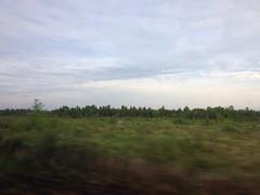 Hurtling to Toronto on @VIA_Rail. Weeeee! ;-)