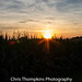 Sunset over cornfield by c.thompkins87