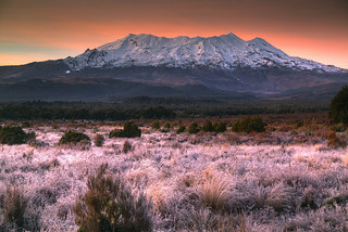 Ruapehu at Dawn