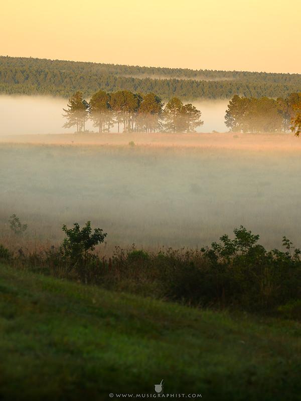 Amanecer-niebla-800pxV