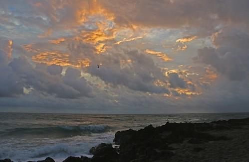 ocean morning sun water sunrise island dawn florida stuart atlantic atlanticocean hutchinson houseofrefuge hutchinsonisland