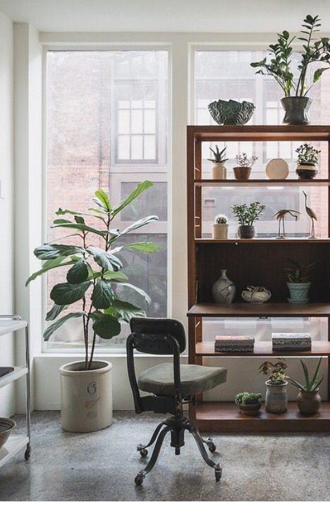 crockasplanter