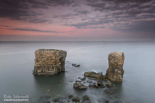 uk longexposure sunset sea sky seascape colour clouds rocks erosion northsea northeast stacks sunderland whitburn souterlighthouse sigma1020 clifftops nikond3100 rickyschonewald