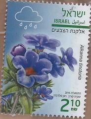 1174094808  Israel Jewish Stamp