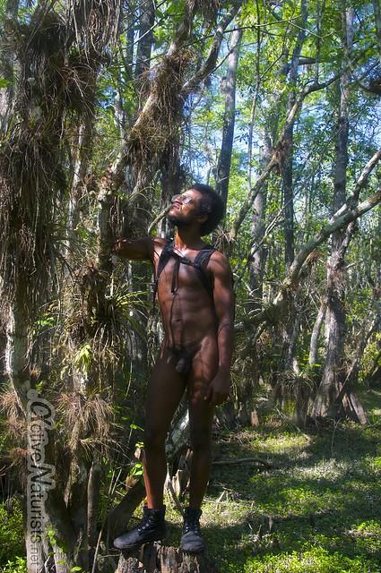 naturist 0001 Gator Hook Trail, Big Cypress National Preserve, Florida, USA