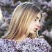 Lilac dreams by alexandra_bochkareva