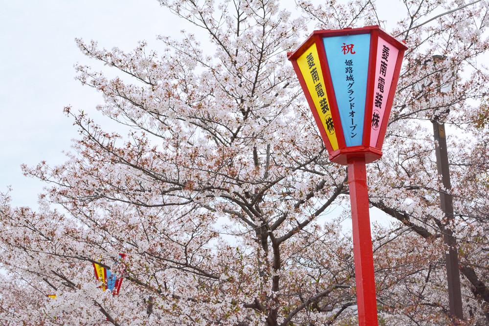 Dans le jardin du chateau d'Himeji