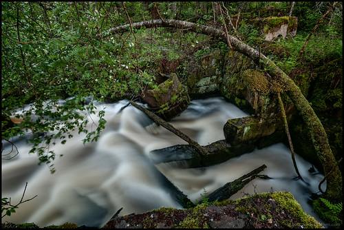 longexposure trees mill night moss ruins rocks rapids foliage natt träd esse ruiner mossa fors stenar kvarn lappfors lövverk långexponering hjulfors