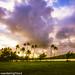 Hawaii2016-533