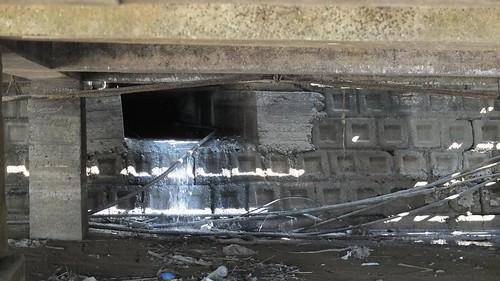 伊達邵碼頭可見廢水直接排放