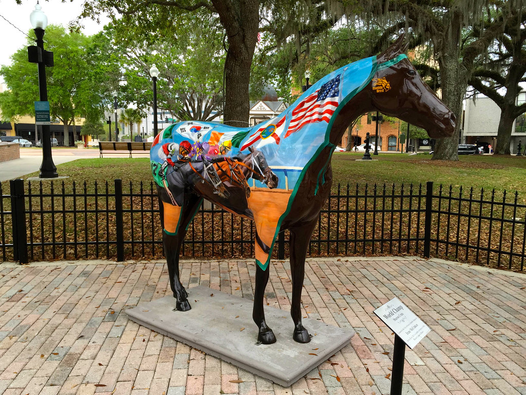 Horse in Ocala, Florida