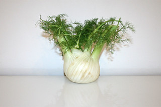 02 - Zutat Fenchel / Ingredient fennel