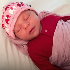 so grateful for my rosy little girl. after the jaundice battle with graham, having a baby that is pink and plumping quickly is a welcome blessing. #cantstopstaring #nofilternecessary
